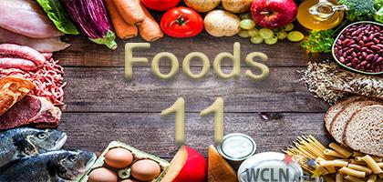 Food Studies 11